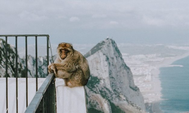 Gibraltar und die Coronakrise