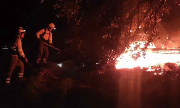 Moreno: Brand in Málaga unter Kontrolle