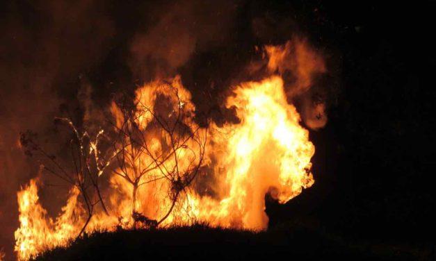 Brand auf La Palma: einer der gefährlichsten Brände seit Menschengedenken